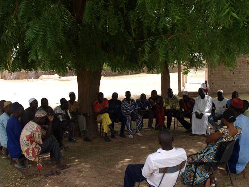 reunion sous arbre a palabre